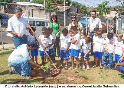 Buracanã recebe plantio de árvores