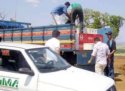 Controle do transporte de animais e vegetais em Minas tem aumento de 25%