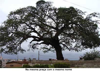 Antônio Leonardo veta projeto que altera o nome da Árvore dos Enforcados