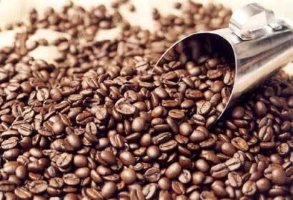 IMA planeja certificar 800 propriedades de café em 2009
