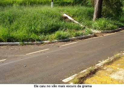 Jardineiro morre em acidente no Barreirinho