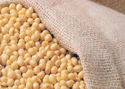 Minas encerra safra de grãos com produção estável