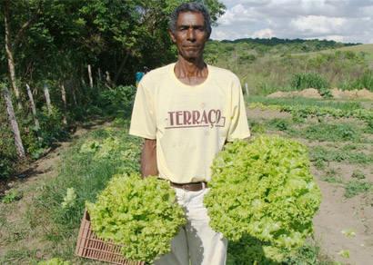 Novo grupo de agricultores inicia atividades no Cinturão Verde