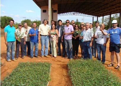 Produtores rurais recebem mudas de eucalipto