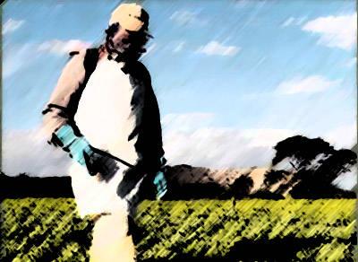 Comerciantes de agrotóxicos devem enviar relatório até o dia 29