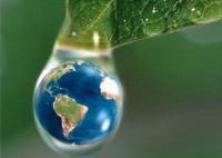 Organizações preparam cartilha para estimular jovens a preservar o meio ambiente