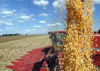 Brasil colhe 149 milhões de toneladas de grãos na safra 2009/2010
