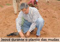 Fazenda Experimental de Araxá inicia plantio de oliveiras