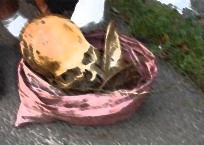 Ossada humana é encontrada no acesso ao distrito de Itaipu