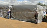 Capal inicia venda de sementes e adubos com prazo especial