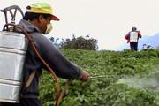 Minas Gerais continua como referência na fiscalização do uso de agrotóxicos no país