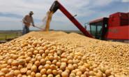 Agronegócio contribui com 32% das exportações mineiras no primeiro trimestre
