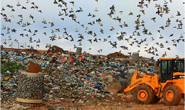 Cemig comercializa energia gerada a partir do lixo