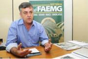 Decretado estado de emergência contra broca do café em Minas