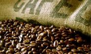 Minas deve ter em 2012 a maior produção de café e grãos da história