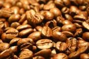 Minas busca na América Central reforço para cafeicultura sustentável