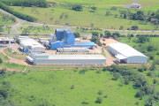 Capal registra crescimento de 34% em 2013