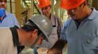 Capal lança suplemento mineral 40 VG para bovinos de corte