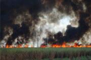 Período seco em Minas traz riscos de queimadas ao sistema elétrico