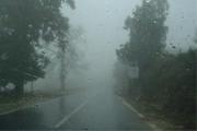 Período chuvoso exige cuidados para evitar doenças