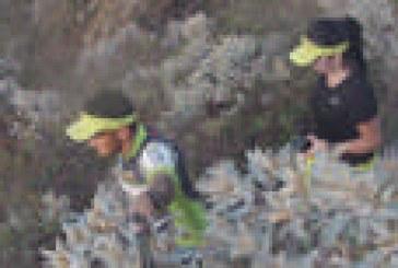 Araxá recebe 1ª Edição da Forrest Run