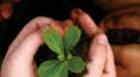 Araxá recebe curso de Aperfeiçoamento em Educação Ambiental
