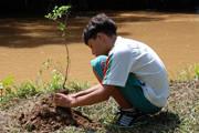 Sesc promove Fórum de Educação Ambiental entre os dias 6 e 10 de junho