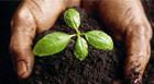 Araxá sedia Fertbio 2014 que debate fertilidade e biologia do solo