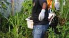 Corpo de jovem é encontrado em terreno baldio no Dona Beja