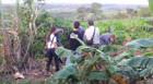 Produtor rural é encontrado morto e enterrado no quintal de casa