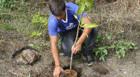 IPDSA realiza atividades do projeto Ações Integradas ao Meio Ambiente