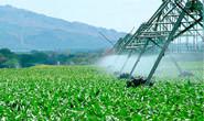 Emater orienta produtores sobre economia de água na irrigação