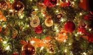 E vem chegando o Natal no CSD