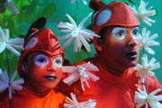"""O Teatro Municipal de Araxá convida para """"Nemo, o musical"""""""