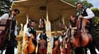 Teatro Municipal recebe orquestra de violoncelos