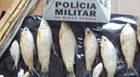 Polícia intensifica fiscalização nos rios da região com a chegada da Piracema