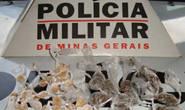 Polícia Militar prende diversas pessoas envolvidas com o tráfico