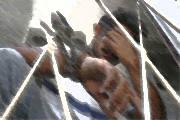 Mostra pênis em via pública, cai do muro em tentativa de fuga e acaba preso pela PM