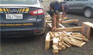 Polícia Rodoviária Federal apreende 187 kg de maconha na BR-262