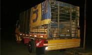 PRF apreende caminhão que transportava pessoas no compartimento de carga