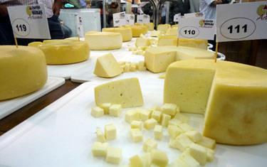 Comercialização do queijo mineiro é liberada para todo o país
