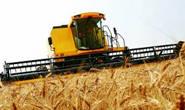 Minas supera média nacional em aplicação de crédito rural