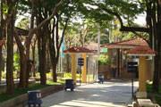 SESC Araxá realizou uma simultânea de xadrez para professores e estudantes