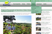 Capal lança novo site