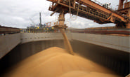 Alemanha é o maior comprador do farelo de soja de Minas Gerais