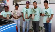 Projeto Sonho Verde distribui 400 mudas de árvores