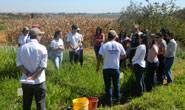 Alunos do curso de zootecnia da UFU visitam o curso de agronomia do Uniaraxá