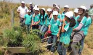 Ações de preservação do meio ambiente em Tapira são promovidas pela Vale