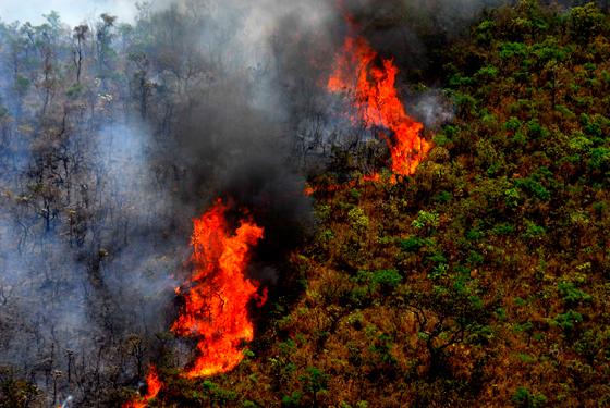 Governador libera recursos para combate a incêndios em Minas Gerais