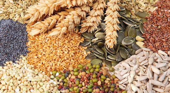 Safra mineira de grãos